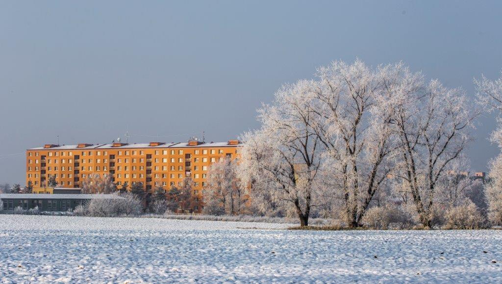 Veselí-nad-Moravou-v-zimě-13